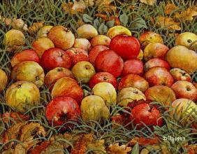 Durnitzhofer Apples, 1993