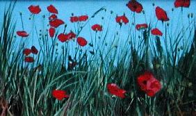 Poppies, 2002 (oil on canvas)