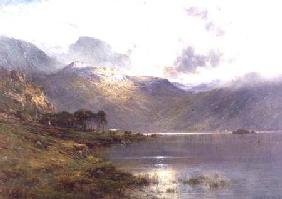 Near Inversnaid, after the rain