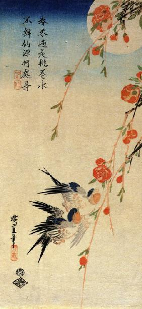 Flying Swallows under Peach Blossoms in the Moonlight