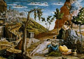 The Agony in the Garden, left hand predella panel from the Altarpiece of St. Zeno of Verona