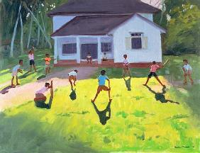Cricket, Sri Lanka, 1998 (oil on canvas)