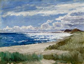 Beach at Skagen