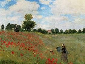 Corn Poppies Argenteuil