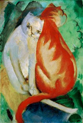Cats, red and white