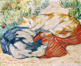 Cats on a red cloth. 1909/1910