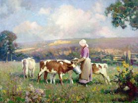 Feeding the Calves (oil on panel)
