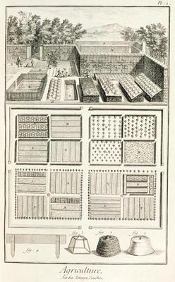 A vegetable garden, from 'The Encyclopedia of Science, Art and Engineering' by Denis Diderot (1713-8