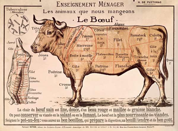 Beef: diagram depicting the different cuts of meat (colour litho)