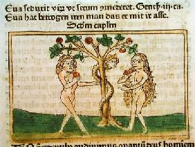 The Fall of Adam and Eve, from 'Speculum Humanae Salvationis', published in Augsburg