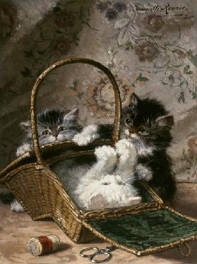 Kittens in a work basket