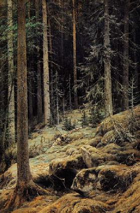 Shishkin / Forest Darkness / Painting
