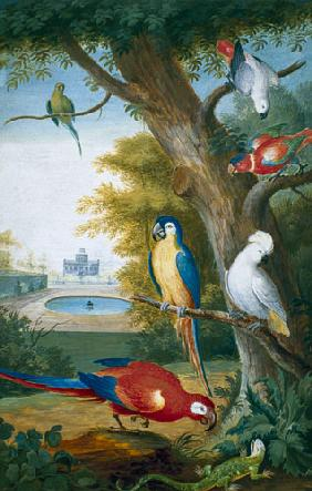 Parrots and a Lizard in a Picturesque Park