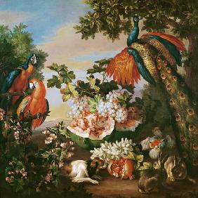 Fruit and Exotic Birds in a Landscape