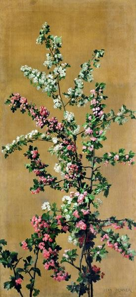 Japanese Cherry Tree and Hawthorn Branches  (re 215287 for pair)