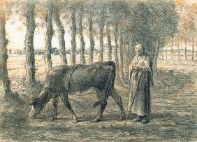Woman with a cow