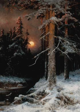 Wintry woodland landscape with full moon.