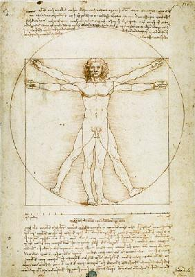 Vitruvian man (proportion drawing)