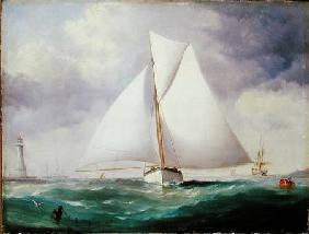 The Spinnaker Sail