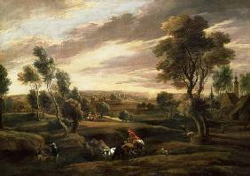 Extensive wooded landscape