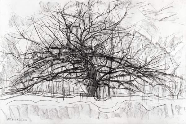 Study for The Grey Tree 1911