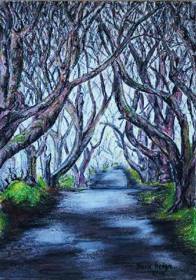 Dark Hedges in Eire