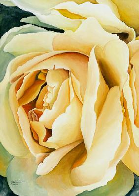 Yellow Rose (left)