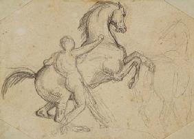 Rearing stallion held by a nude man (pencil)