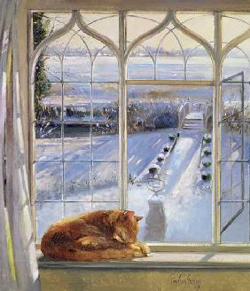 Sundial and Cat (oil on canvas)