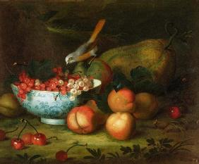 Still Life of fruit with a Finch