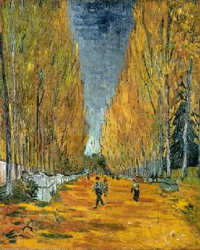 Le's Alyscamps, avenue in Arles
