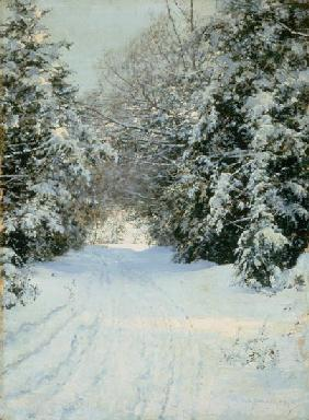Snow-covered woodland path