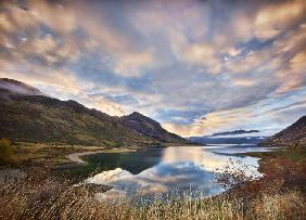 Morning Delight at Lake Hawea